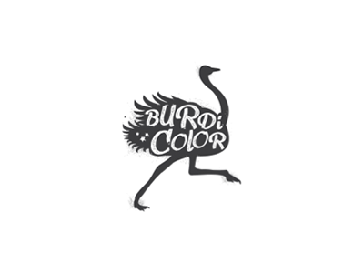Burdicolor